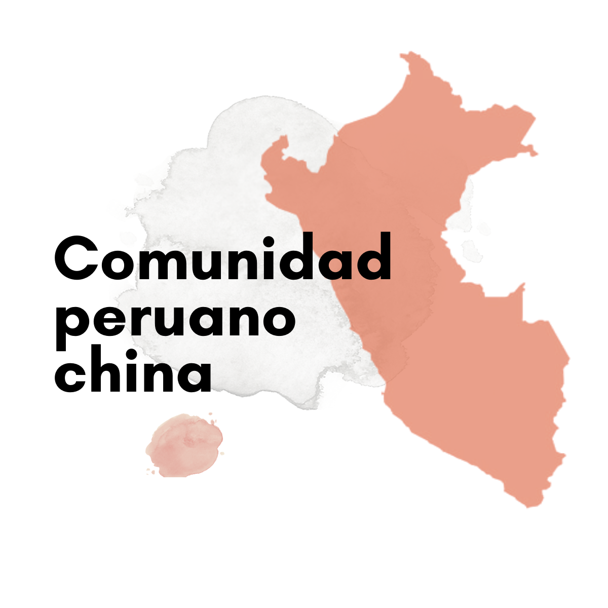 Comunidad peruano china